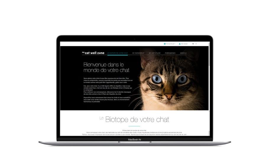 Site web dédié au lancement de produit